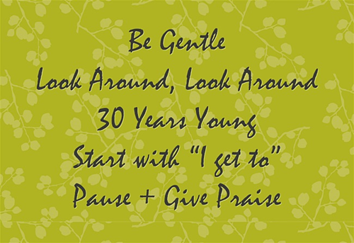 "Team Mantra - Be Gentle, Look Around, Look Around, 30 Years Young, Start with ""I get to"", Pause + Give Praise"