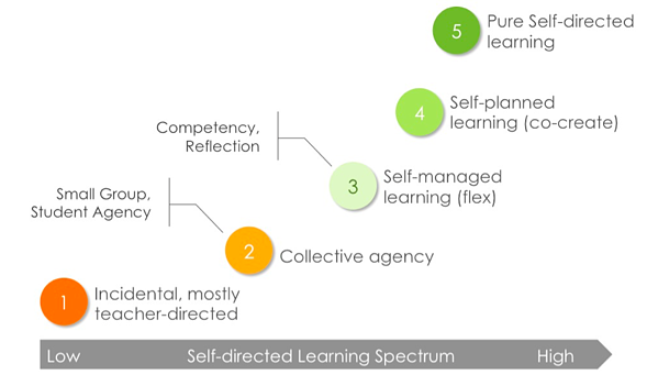 Understanding the progression of self directed learning by Anthony Kim