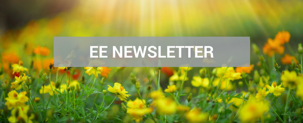 May Newsletter Cover Image Showing Spring Flowers